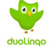 duolingo-apk