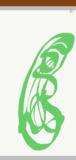 Adobe Illustrator Draw screenshot 5