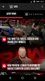 WWE screenshot 1