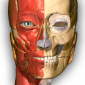 Anatomy Learning - 3D Atlas APK 2.1