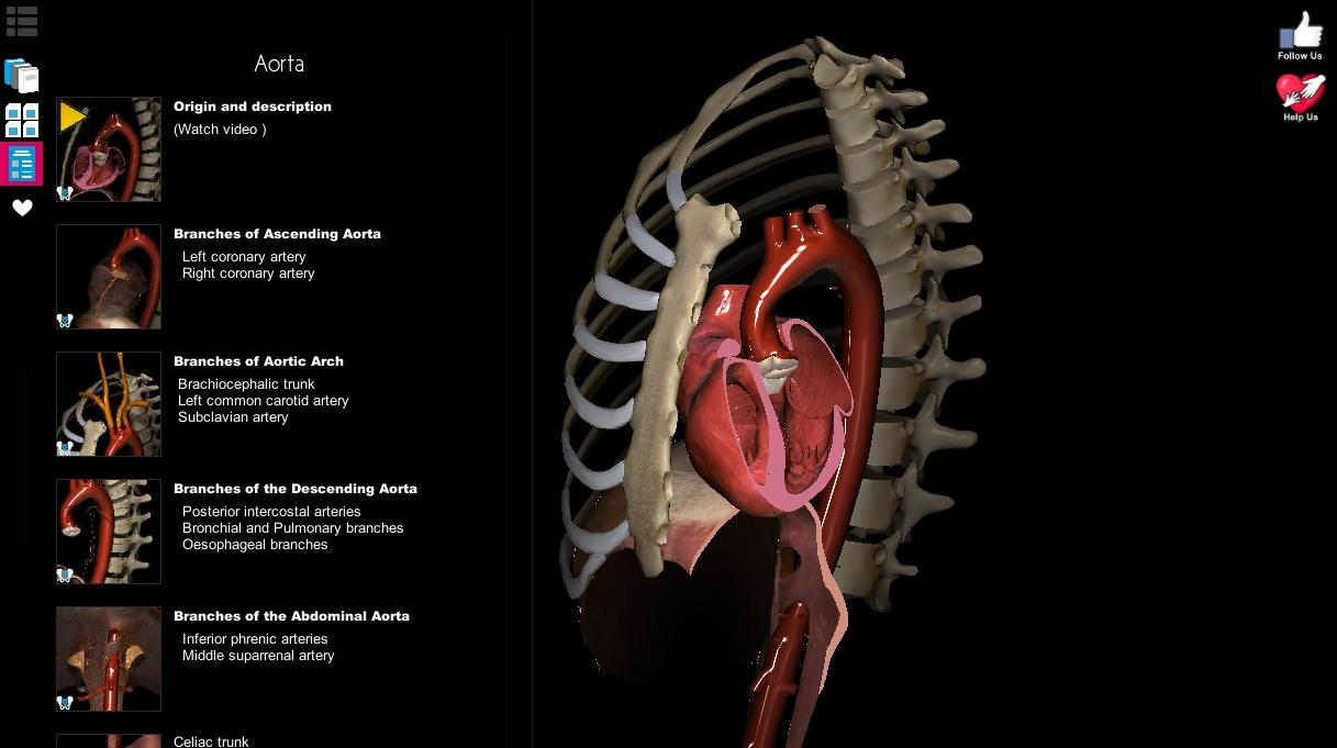 Anatomy Learning - 3D Atlas 2.1 for Android - Download | AndroidAPKsFree