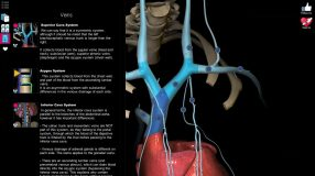 Anatomy Learning - 3D Atlas screenshot 5