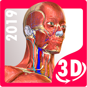 Anatomy Learning - 3D Atlas 2 1 for Android - Download - AndroidAPKsFree