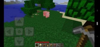 Minecraft: Pocket Edition Demo screenshot 2